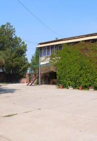 Просторная территория мини гостиницы Песчаное Летом